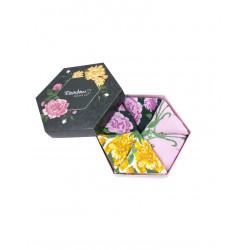 Lillesokkide karp